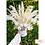 Thumbnail: Dried Flower Arrangements
