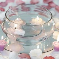 Wide Round Glass Vase Terrarium