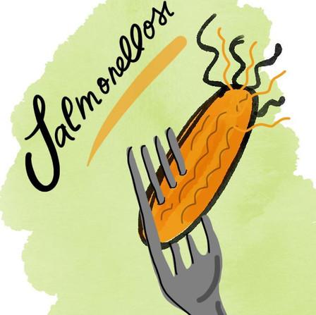 Salmonellosi: mangiare consapevolmente