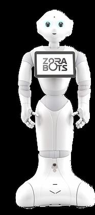 Robot humanoide Pepper debout statique