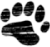 The Kodiak Club Bear Paw