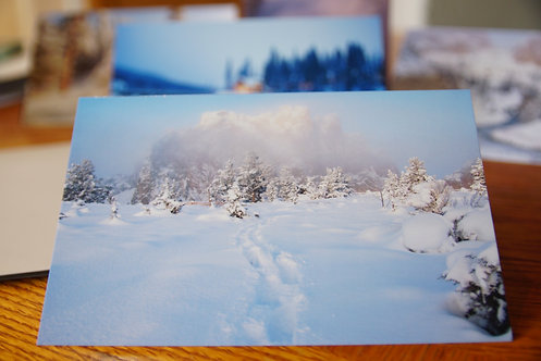 Winter Holiday Cards 5pk - 5x7""