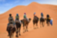 Camel+ride+morocco.jpeg