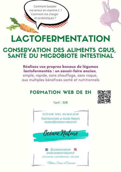 Atelier lactofermentation en ligne