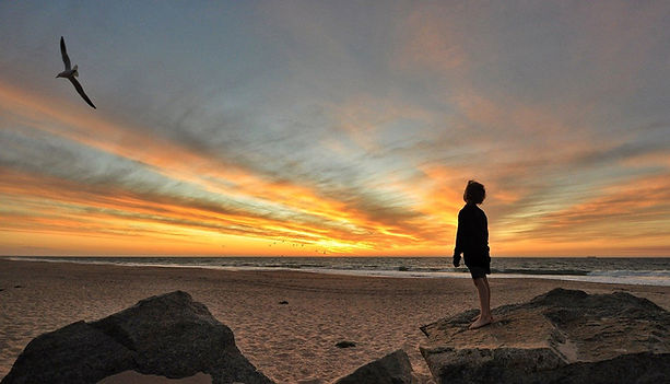 sunset-4801688_1280 copie.jpg