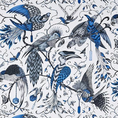 אודובון כחול