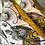 Thumbnail: אודובון זהב