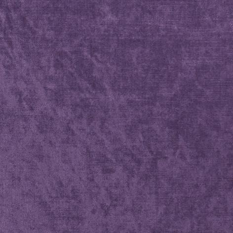 F1069_18_allure_grape.jpg