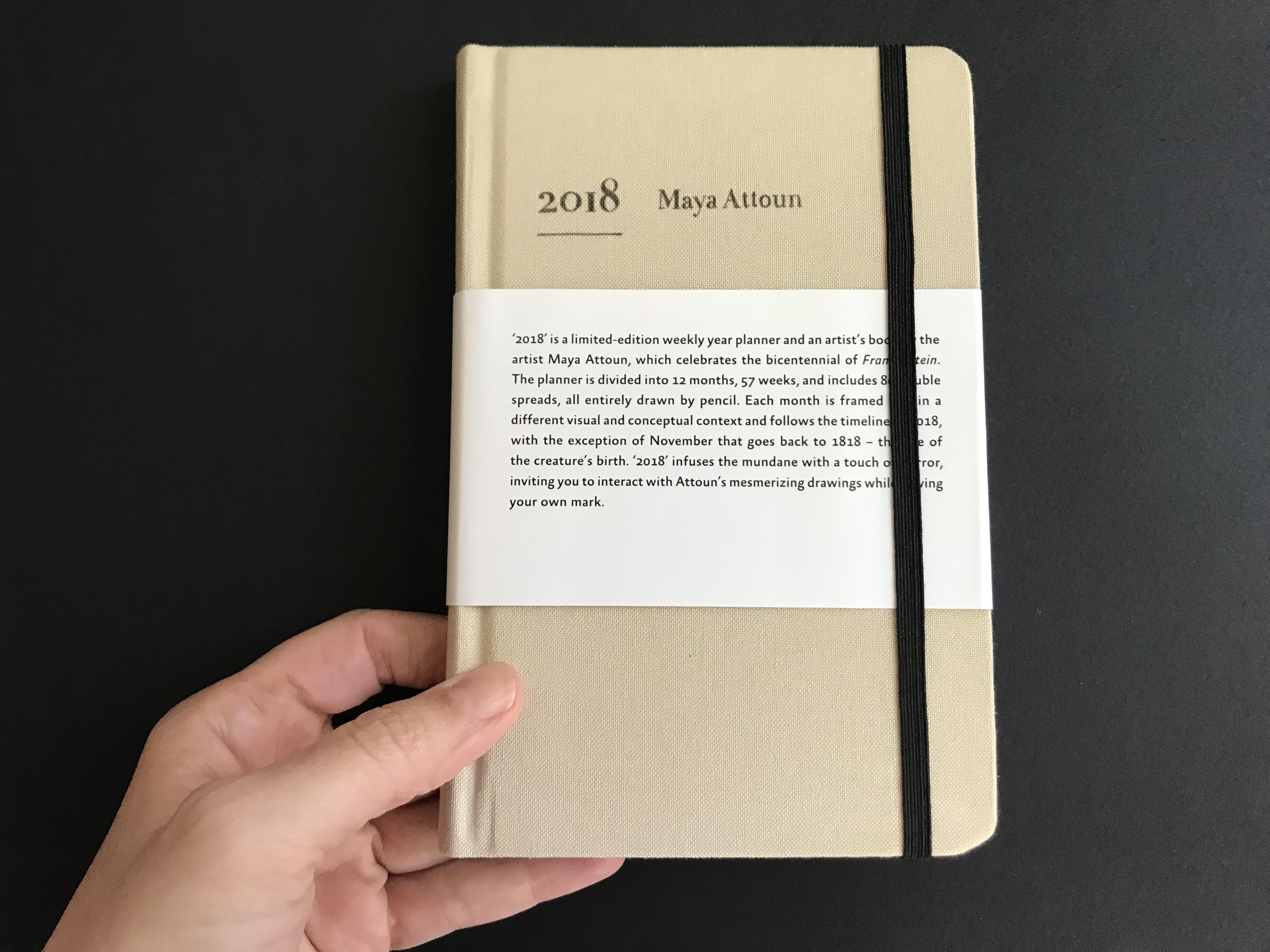 מאיה אטון, 2018 ספר אמן ויומן שבועי, 17X11 סמ (6)