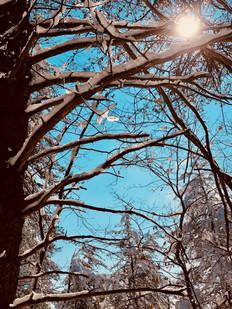 www,sparks.photography, art photography, Miranda Sparks