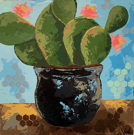 Tiago Cactus