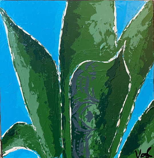Small Agave 2