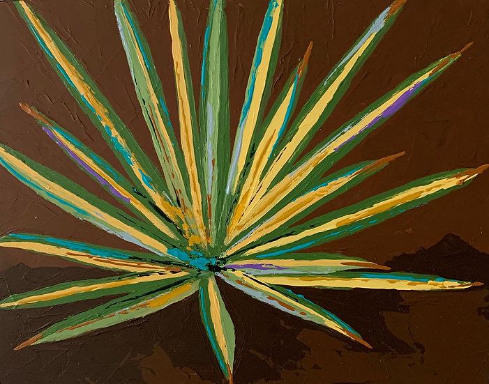 Color Burst Cactus 3