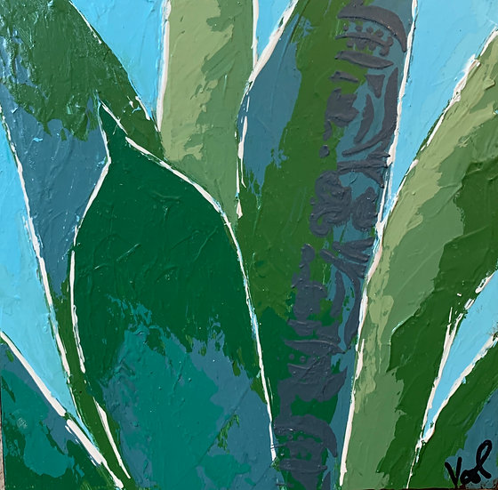 Small Agave 5