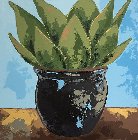 Potted Agave 2