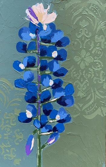 Bluebonnet 5