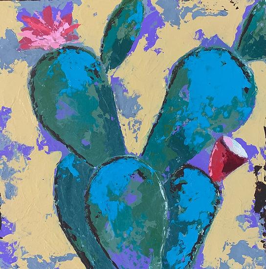 Captivating Cactus 3