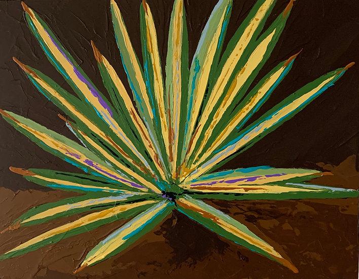 Color Burst Cactus 1