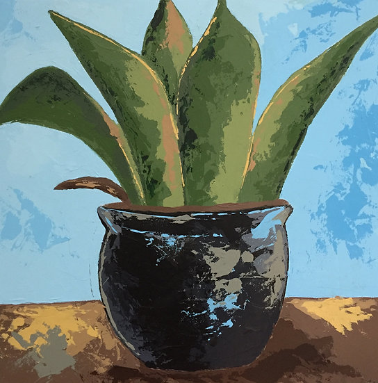 Potted Agave 3