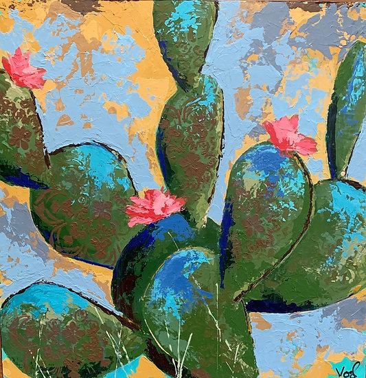 Sunshine Succulent