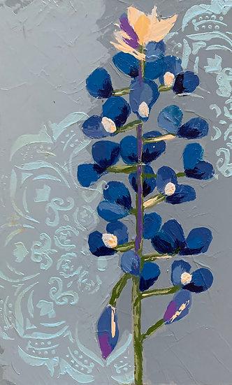 Bluebonnet 6
