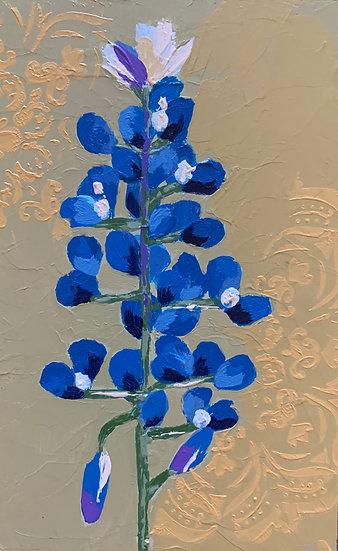 Bluebonnet 3
