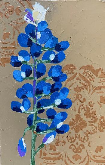 Bluebonnet 2