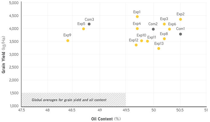 castor hybrids grain yield Vs. oil content