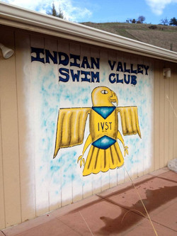 Indian Valley Swim Club Mural