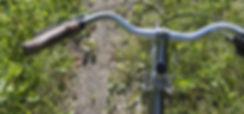 Closeup of a handlebar of a bicycle, Riding Mountain National Park, Manitoba, Canada
