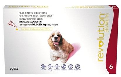 Revolution Dog Red (10.1-20kg).....from