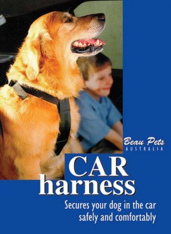 Pet Car Harness - Various Sizes