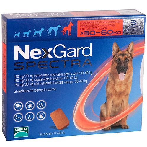Nexgard Spectra 6 Pack.....from