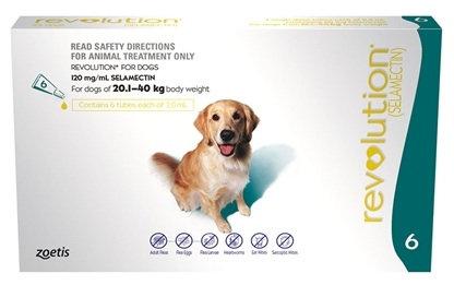 Revolution Dog Teal (20.1-40kg).....from