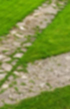 stone path through a green lawn.jpg