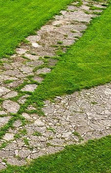 stone path through a green lawn.jpg