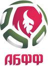 Belarus football.jpg