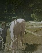 Girl with Horse.jpg