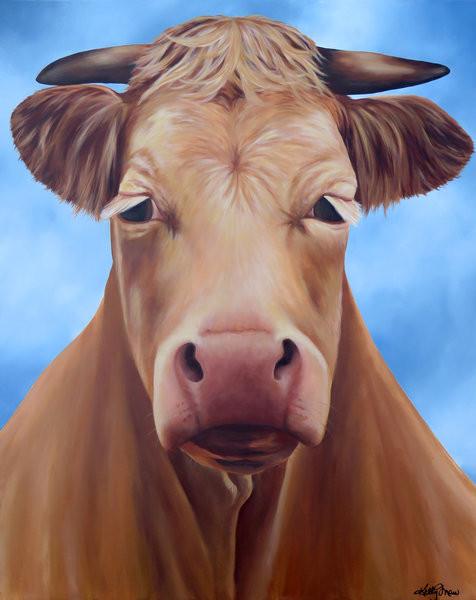 Karen and John's Bull Charlie