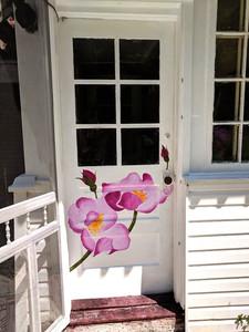 Debbies Back Door