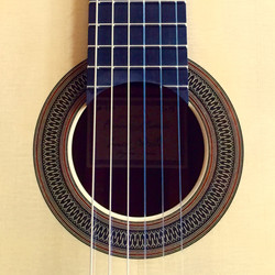 Enrico Bottelli Guitar