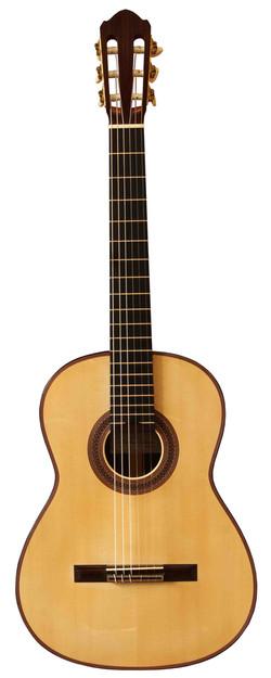 Andrea Stanzione Guitar