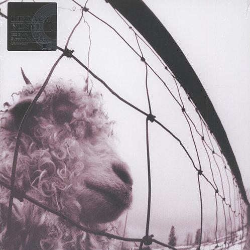 Pearl Jam: VS Vinyl Record