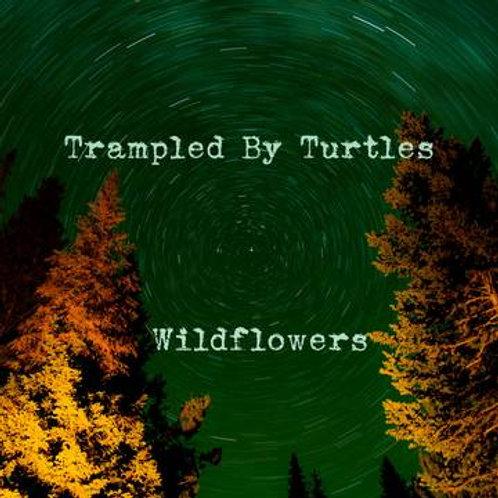 Trampled By Turtles Wildflowers RSD 45