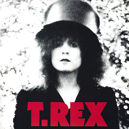 T.Rex: Slider Vinyl Record