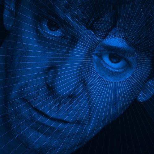 Lou Reed:  Set The Twilight Reeling Vinyl Record