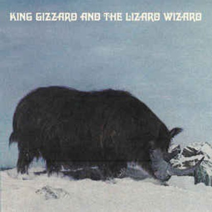 King Gizzard And The Lizard Wizard – Polygondwanaland  Vinyl Record