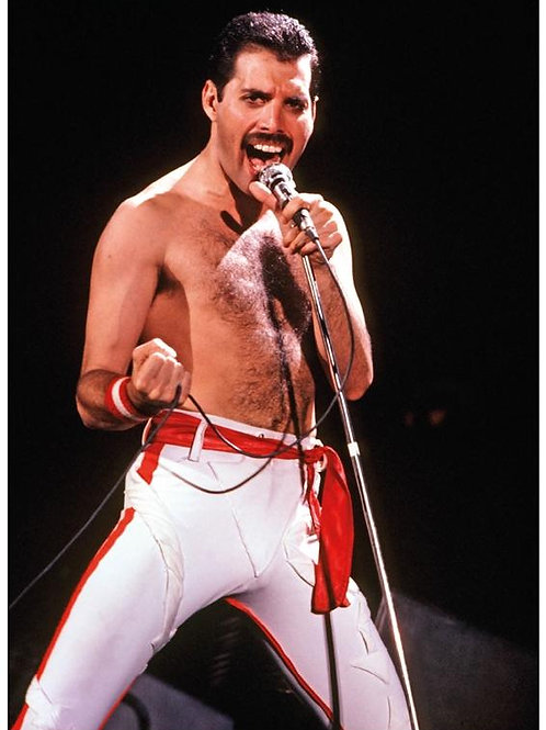 Queen Freddie Mercury Poster
