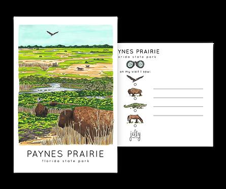 Paynes Prairie Preserve Postcard