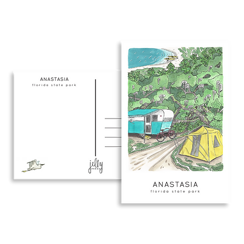 Anastasia State Park Postcard